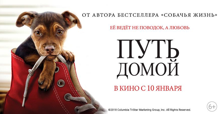 Участвуйте в розыгрыше и получите билеты на пред показ фильма Путь домой!