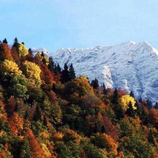 В сентябре россияне поедут отдыхать в Сочи и Крым