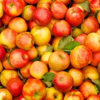 Яблоки - лучший продукт для сохранения здоровья