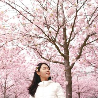 День Японии пройдёт на Moscow Flower Show