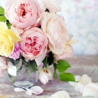 Цветочный рай: фестиваль